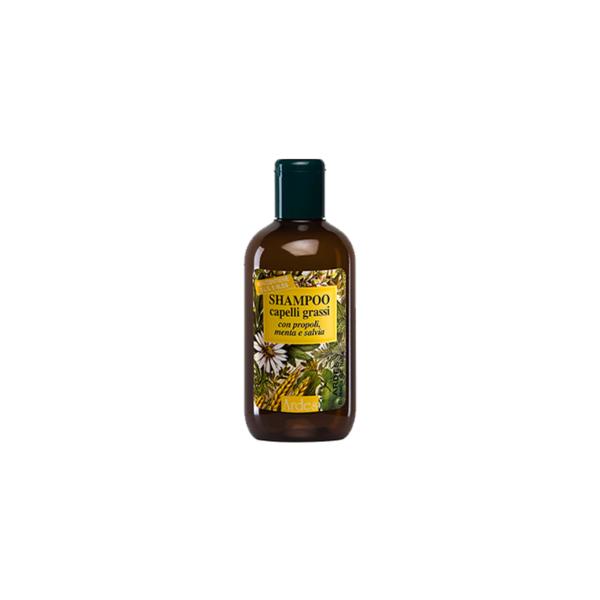 Shampoo Capelli Grassi ARDES